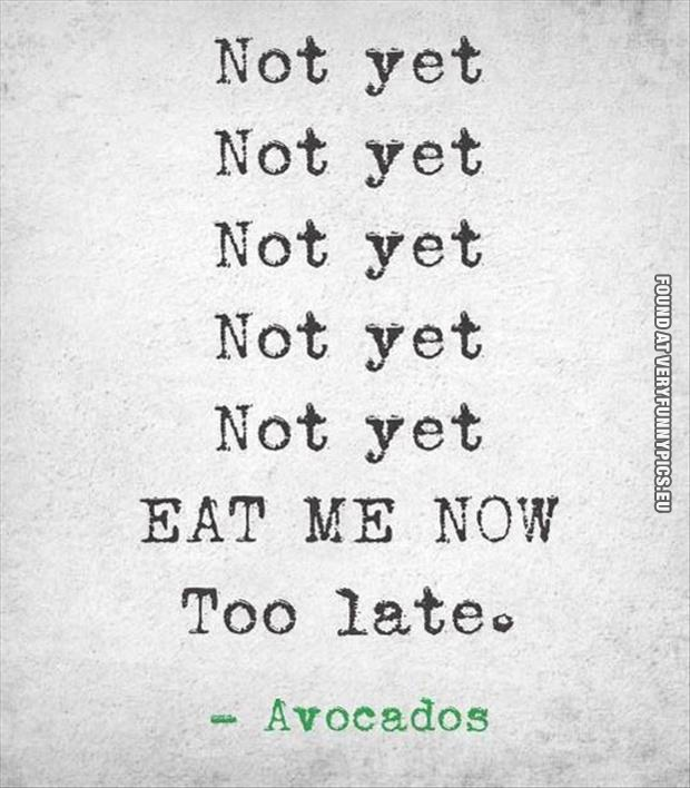 funny-picture-avocado-quote